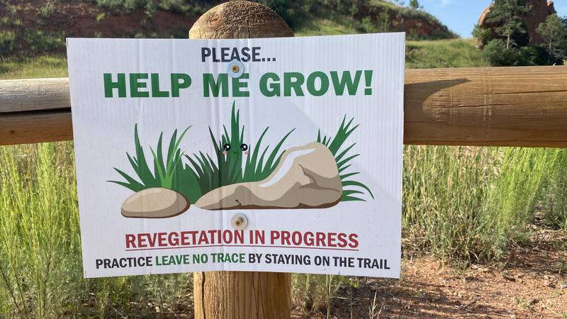 Revegetation in progress at Red Rock Canyon Open Space