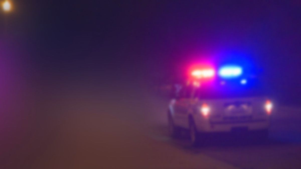Police car with lights