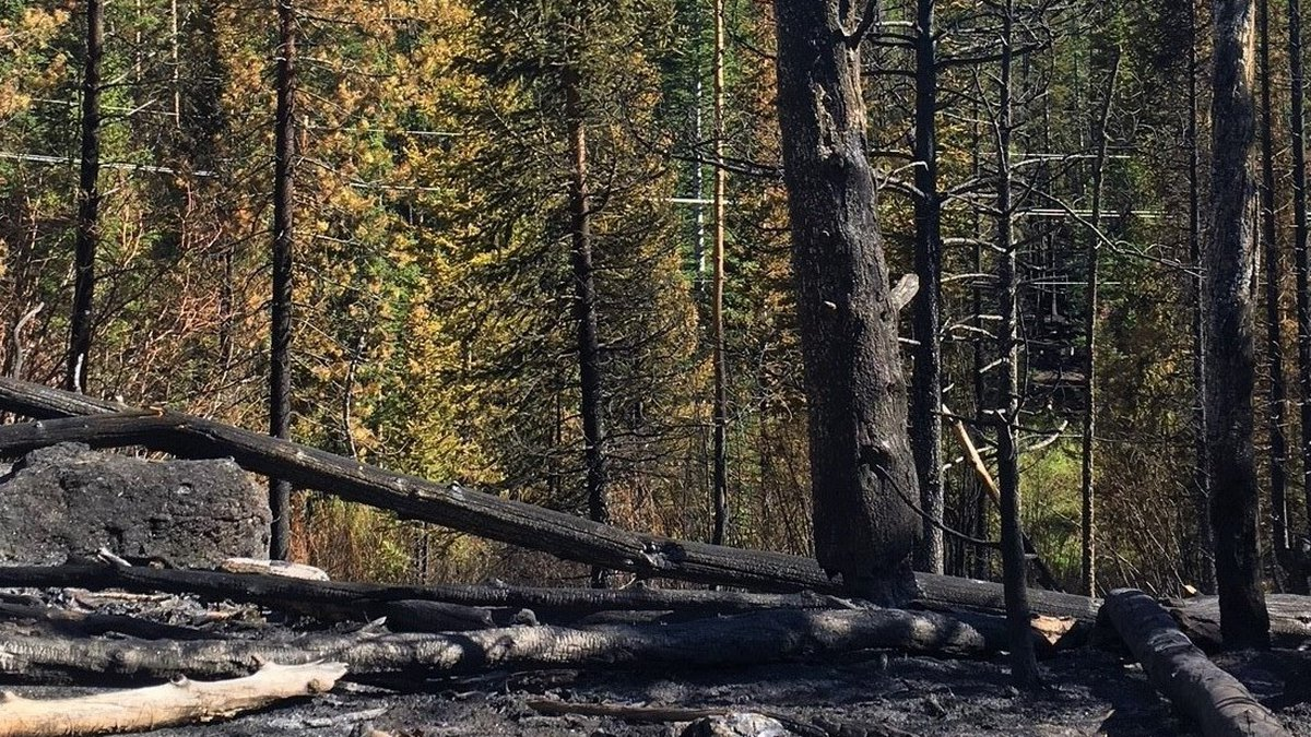 Fire crews reached full containment on the Straight Creek Fire Sunday, June 13, 2021, four days...