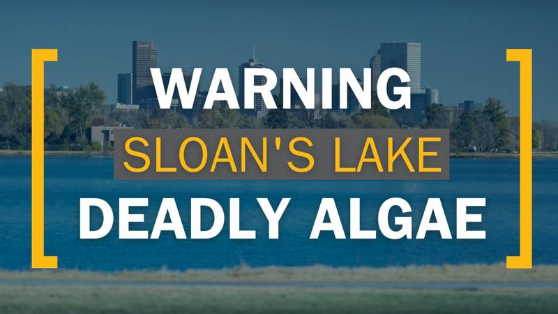 Sloan's Lake Temporarily Closed Due to Blue-Green Algae