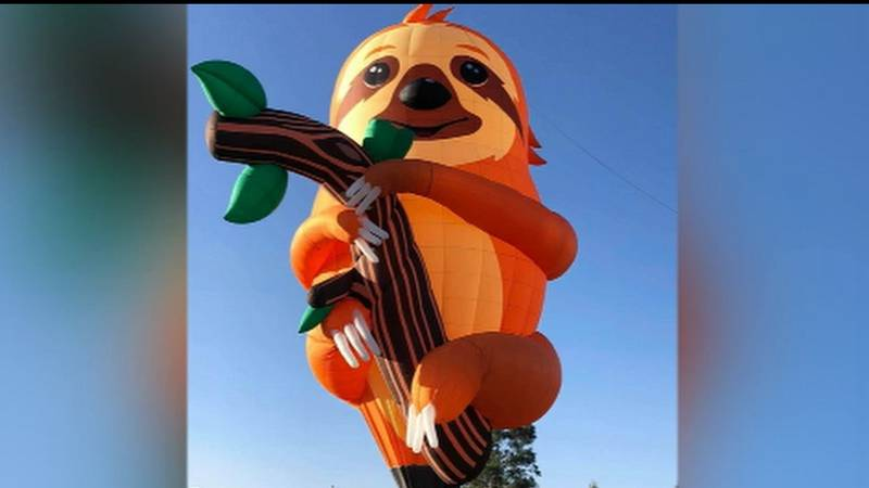 """Special shape balloon """"sloth"""" will be flown by Chris Liberti."""