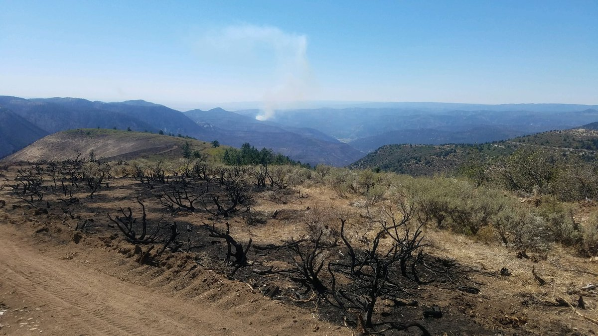 The Pine Gulch Fire has burned nearly 140,000 acres since July 31, 2020.  As of Sept. 9, 2020,...