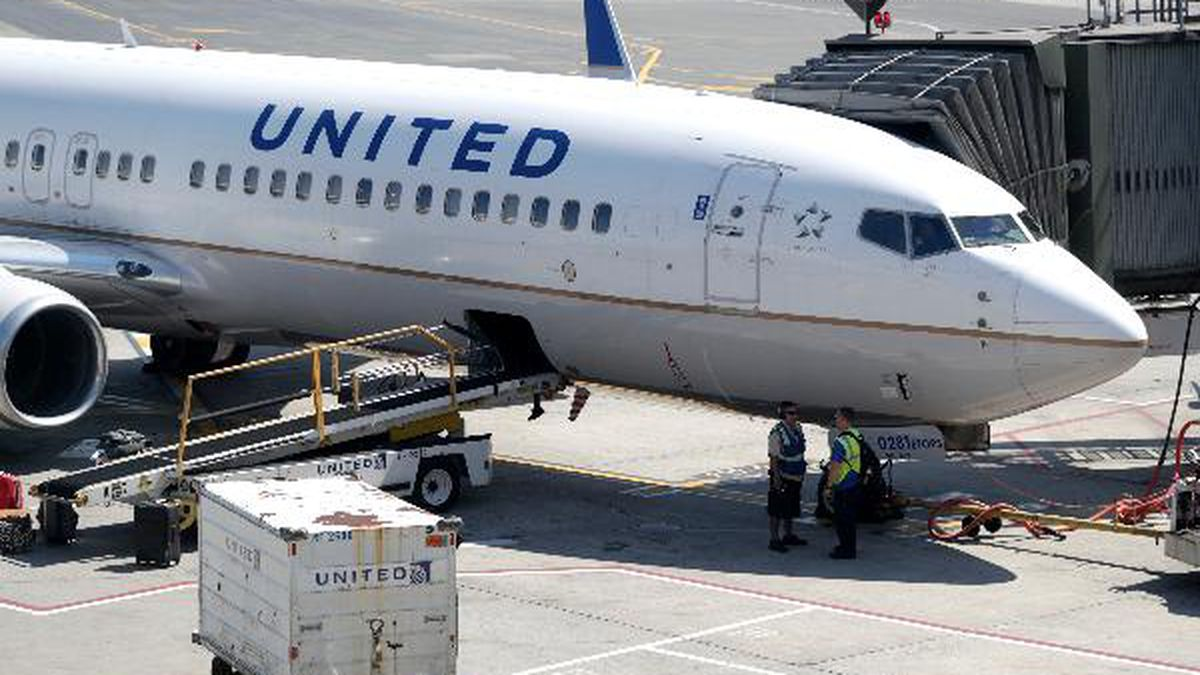 A United Airlines commercial jet sits at a gate at Terminal C of Newark Liberty International Airport, Wednesday, July 18, 2018, in Newark, N.J. (AP Photo/Julio Cortez)