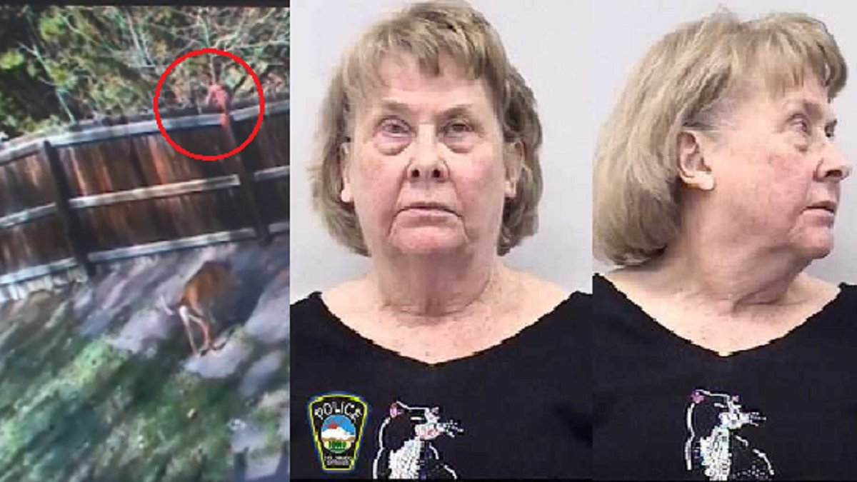 Photo on the left is surveillance of a person dropping something over a fence into a...
