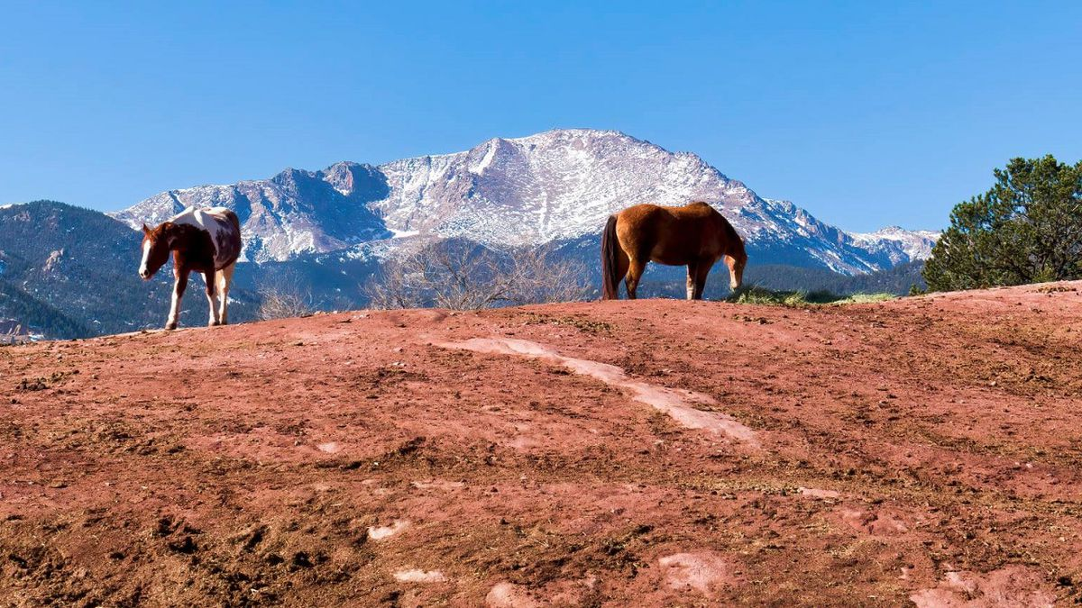 Photo from Garden of the Gods in Colorado Springs by Larry Marr.