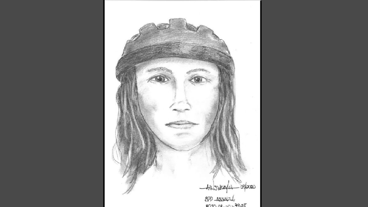 Composite sketch of an assault suspect.