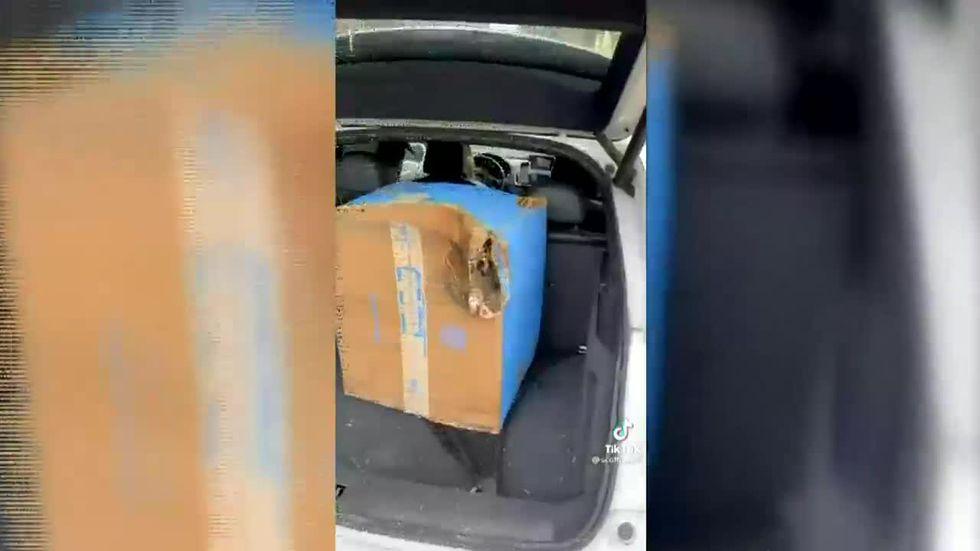<b>TikTok</b> video helps woman find missing package thumbnail